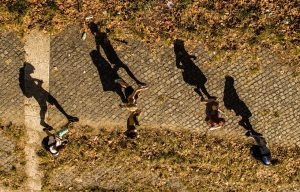 Overhead view of five people walking along a path, casting long shadows.